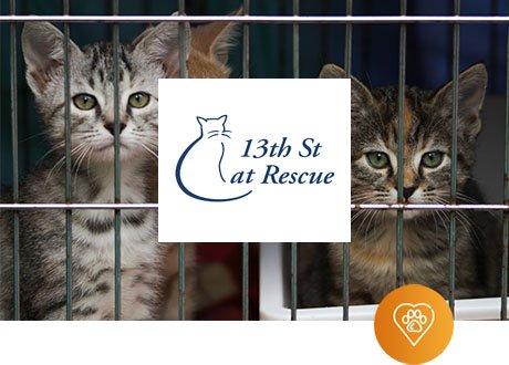 13th Street Cat Rescue