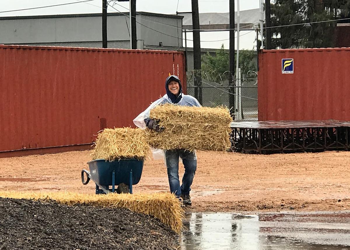 Dallas Farm - Chris Carlberg
