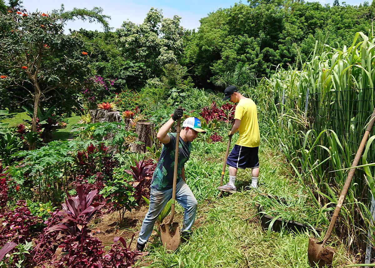 Leilani Farm Sanctuary Landscaping